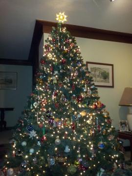 Nossa Arvore de Natal em 2013